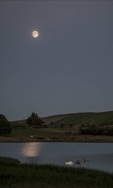 Moonlight over Llynhelyn Pool