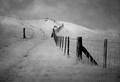 IR-Fence over the hill